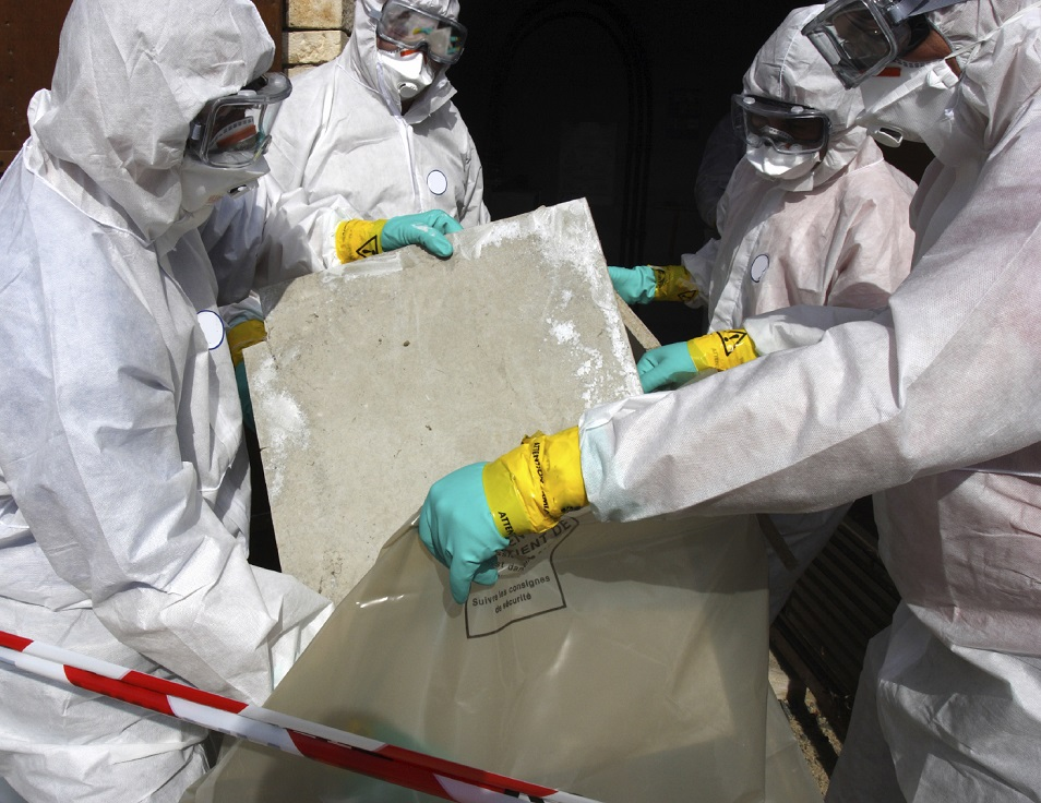 Asbestos, Lead and Mold Remediation